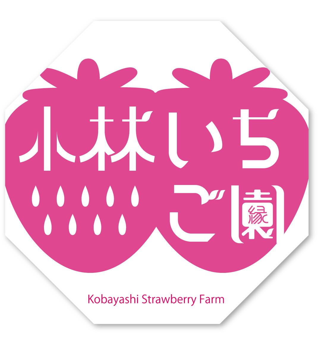Octagon_kobayashichigo.jpg